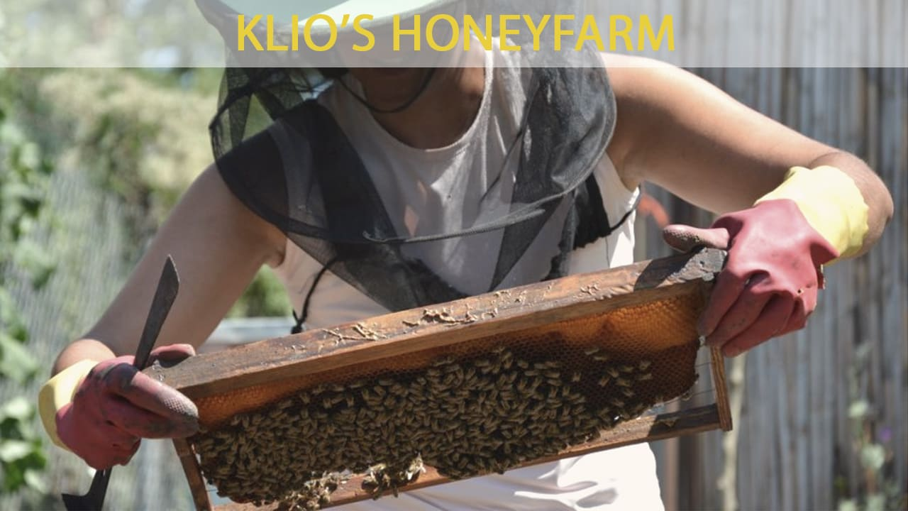 A local beekeeper at Clio's honeyfarm at Olympia Greece